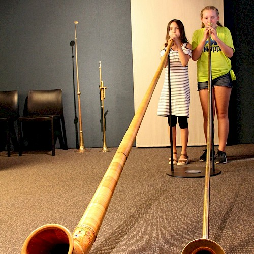 Try to play yourself our alphorns!